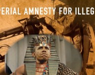 FFZ Imperial Amnesty Thumb