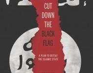 Black Flag Cover pic
